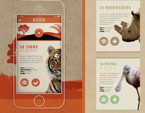 UI / UX - Application design - Zoo